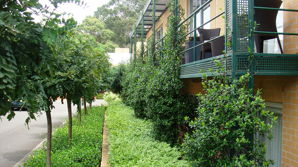 The balconies of the MGSM hotel, surrounded by greenery and trees
